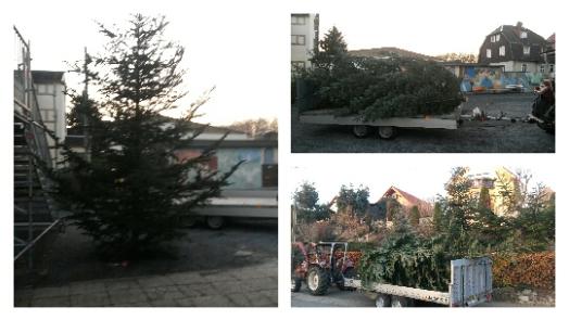 Der Baum steht! Danke an Spender und Helfer. Freitag 30.11.2018 ab 14.30 Uhr Weihnachtsmarkt Grundschule und Hort Zehista